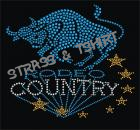 T-shirt Rodeo Country en strass C2